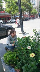 道路横の花